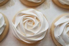 8.91-rosette-close-up